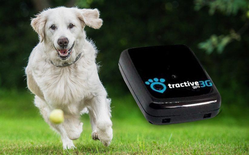 Tractive GPS 3G pet tracker
